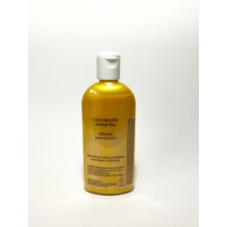 shampoing  Wheat  citron